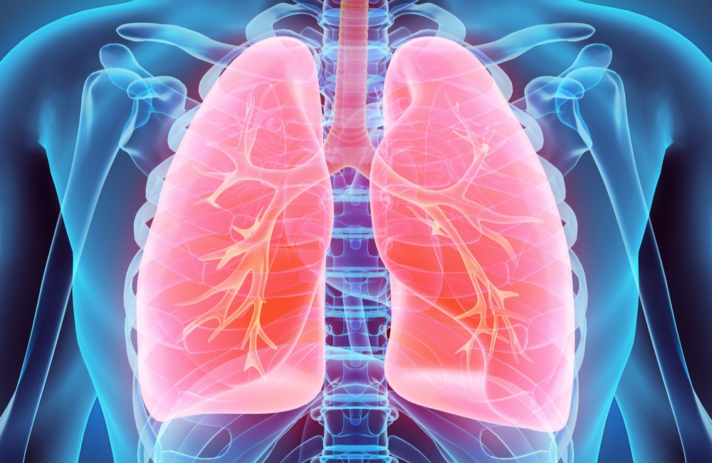 Lung Function (Respiratory) - Header Image